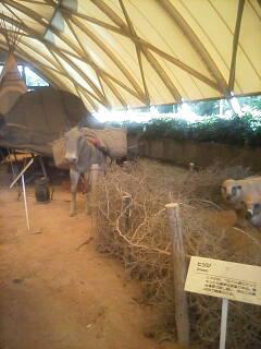 ベルベルのテント