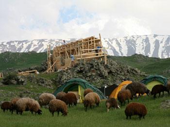 アララト山の丘に現代版の方舟を作っている現場周辺で、羊がのんびり草を食んでいる