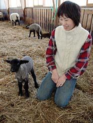 元気に動き回る子羊