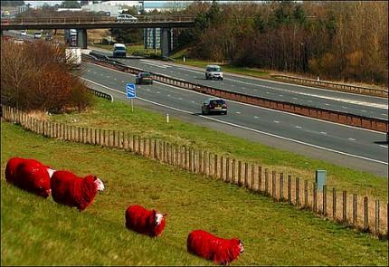 真っ赤な羊たち