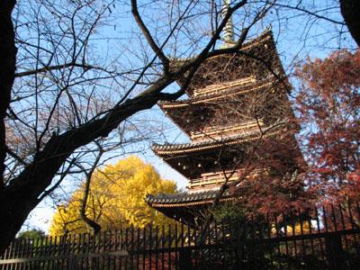 初冬の日差しをあびる五重塔。