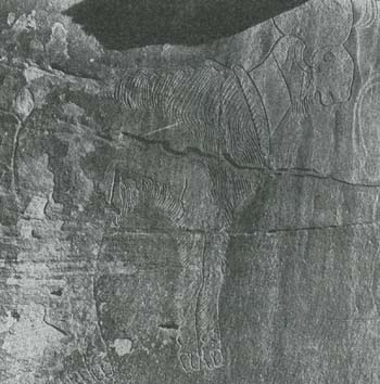 北アフリカ、アトラス地方の線刻画