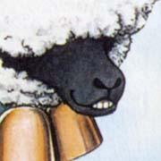 羊タロウのアップ。にやり。
