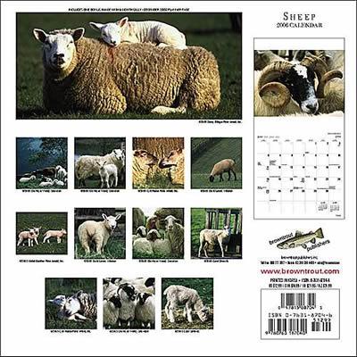 輸入ひつじカレンダー2006ウラ