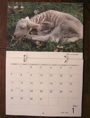 羊カレンダー(平林美紀)