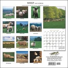 Sheep 2008 Calendar うら