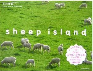 「sheep island」