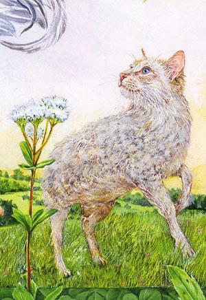 「カフカの絵本」より「羊猫」