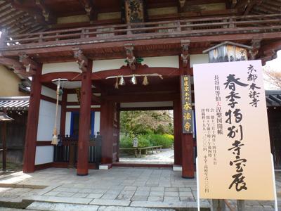 honpouji150410.jpg