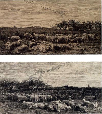 「羊の柵囲い」