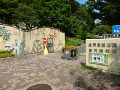 kanazawazooiriguri150916.jpg