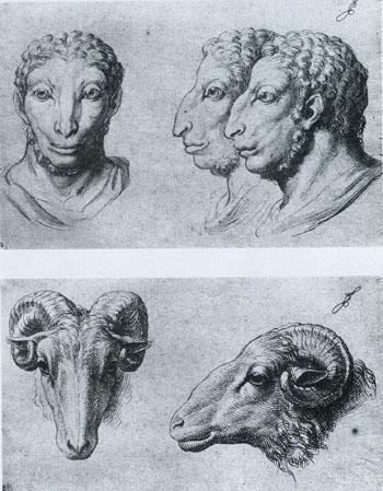 ル・ブランのスケッチ「人間―牡羊」