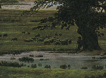 「孤独な木」(部分)