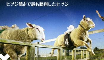 kyousou140903.jpg