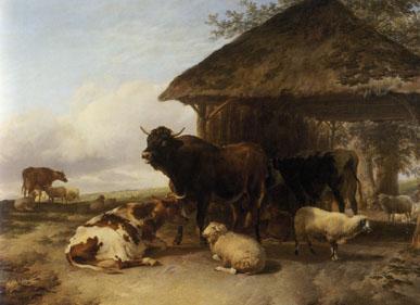 「休息する牛」