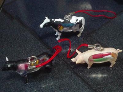 左から、肉牛、乳牛、豚
