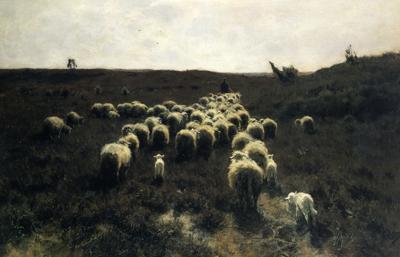 「羊の群れの帰還」