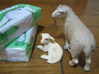 親子羊後ろ姿