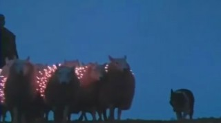 Extream Sheep LED Art