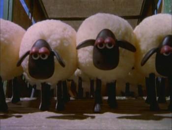 ウォレスとグルミット 羊たち